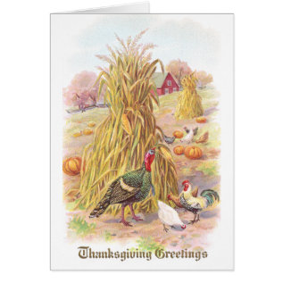 Turkey and Flock of Chickens Vintage Thanksgiving Card at Zazzle
