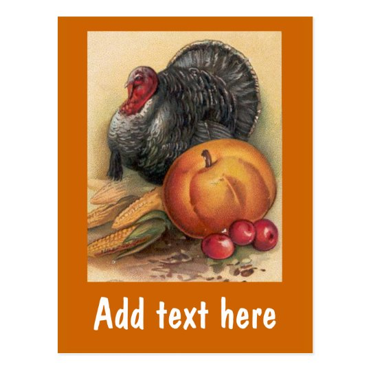 Turkey and Pumpkin Thanksgiving Cards