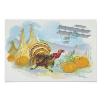 Turkey Chasing An Airplane In A Field Poster