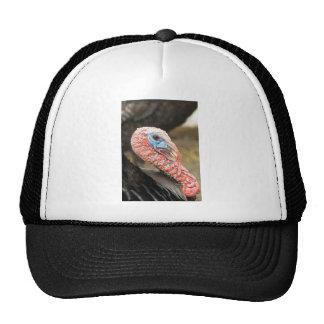 Turkey Close-Up Trucker Hat
