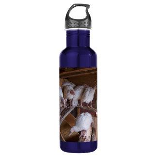 Turkey Coop 24oz Water Bottle