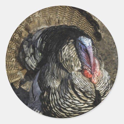 Turkey Day Strut Sticker