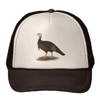 Turkey:  Eastern Wild Tom Mesh Hats