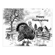 Turkey Farm Drawing Thanksgiving Postcard