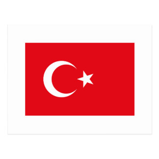 Turkey FLAG International Postcard