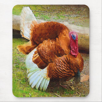 Turkey Gobbler Mouse Pad
