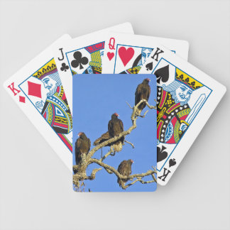 Turkey Headed Vultures Bicycle Playing Cards