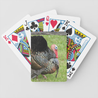 Turkey hunter playing cards