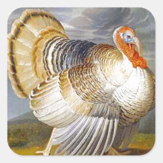 Turkey in a Landscape Square Sticker