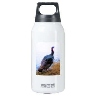 Turkey in Snow 1 SIGG Thermo 0.3L Insulated Bottle
