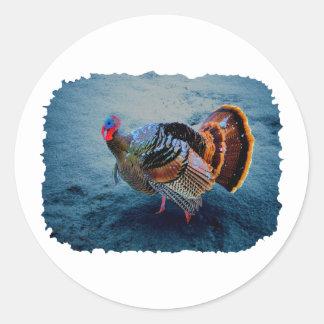 Turkey in Snow 3 Classic Round Sticker