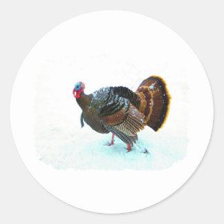 Turkey in Snow 4 Classic Round Sticker