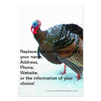 Turkey in Snow 4 Large Business Cards (Pack Of 100)
