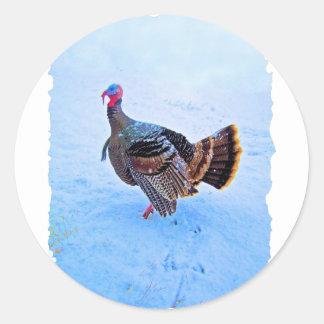 Turkey in Snow 5 Classic Round Sticker