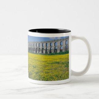 Turkey, Istanbul, Kemerburgaz, Uzunkemer (the Two-Tone Coffee Mug