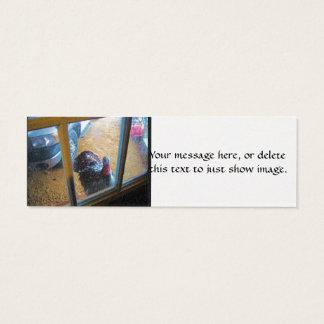 Turkey looking in door mini business card