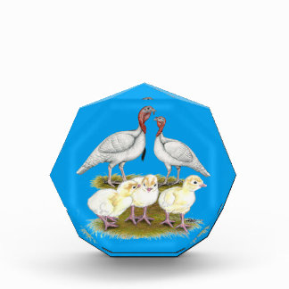 Turkey Mini White Family Award