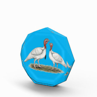 Turkey Mini Whites Acrylic Award