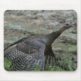 Turkey, Mousepad. Mouse Pad