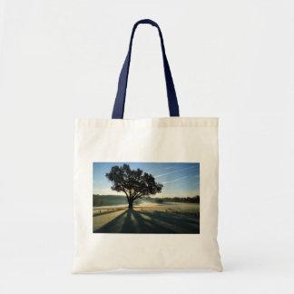 Turkey Oak in Autumn Canvas Bags