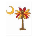 Turkey Palmetto Moon Postcard