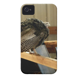 Turkey Post Case-Mate iPhone 4 Case