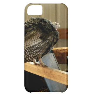 Turkey Post Cover For iPhone 5C