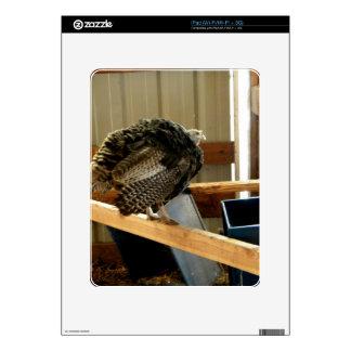 Turkey Post Skin For The iPad