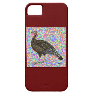 Turkey Rainbow iPhone 5 Cover