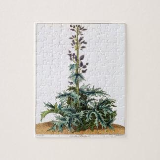 Turkey rhubarb plant jigsaw puzzle