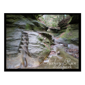 Turkey Run State Park Eroded Stairs Postcard