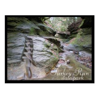 Turkey Run State Park Eroded Stairs Postcard