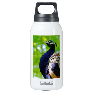 Turkey SIGG Thermo 0.3L Insulated Bottle
