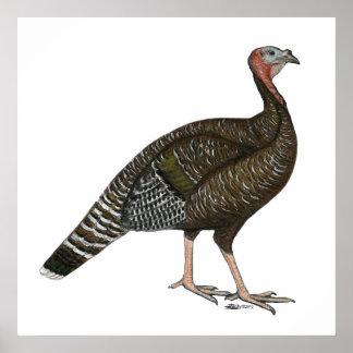 Turkey:  Standard Bronze Hen Posters