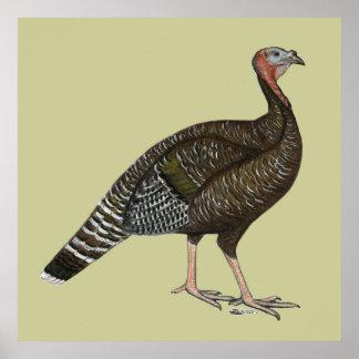 Turkey:  Standard Bronze Hen Print