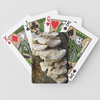 Turkey Tail Mushroom Playing Cards