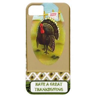 Turkey time iPhone SE/5/5s case