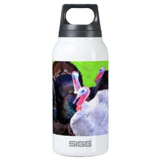 Turkey Time SIGG Thermo 0.3L Insulated Bottle