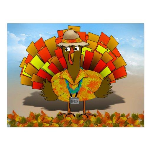 Turkey Tourist on Vacation Post Cards