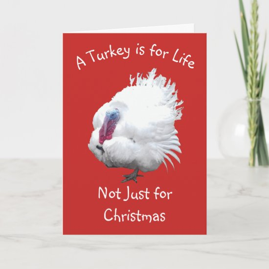 Turkey Vegan Christmas Card