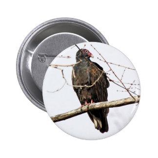 Turkey Vulture Button
