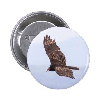 Turkey Vulture Pinback Button