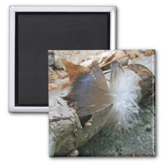 Turkey Vulture Feather Coordinating Items 2 Inch Square Magnet