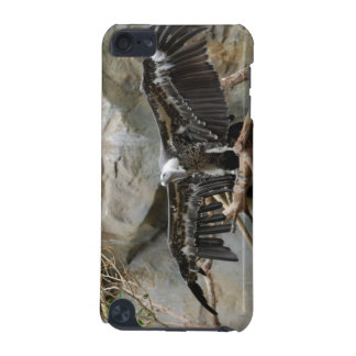 Turkey Vulture iTouch Case iPod Touch (5th Generation) Cover