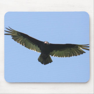 Turkey Vulture Mouse Pad