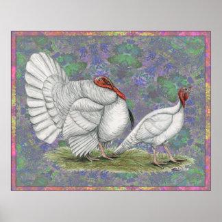 Turkey:  White Holland Pastel Print