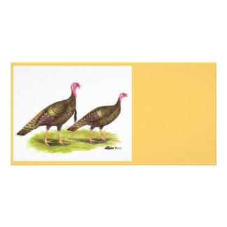 Turkey:  Wild Bronze Card