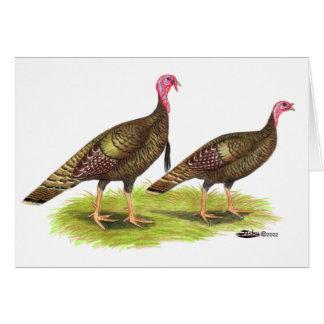 Turkey:  Wild Bronze Greeting Card