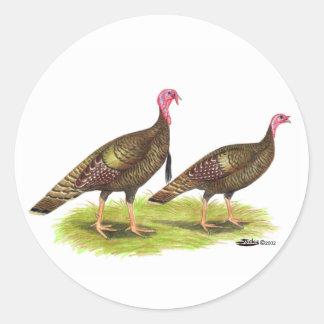 Turkey:  Wild Bronze Classic Round Sticker