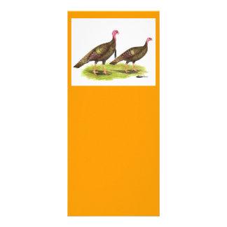 Turkey:  Wild Bronze Rack Card Design